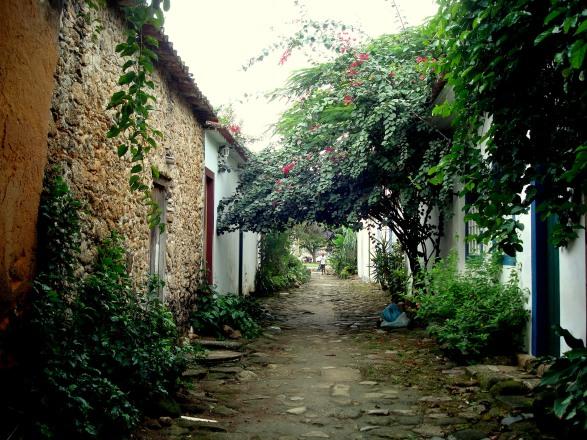 A arborizada Rua do Fogo