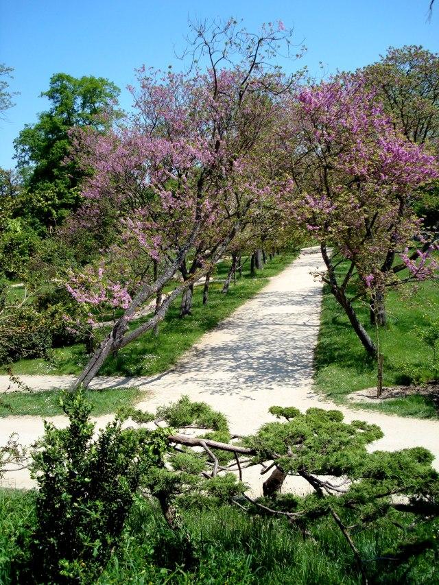 Paisagismo livre no Jardim Inglês