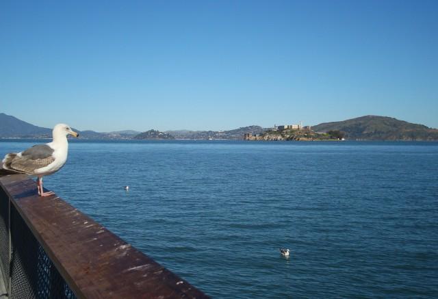 fischerman's wharf 3